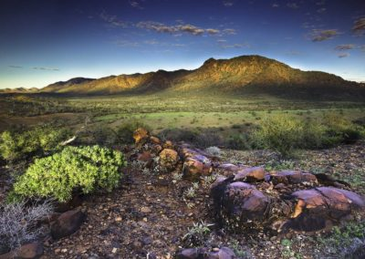 First Light on Mt. McTaggert - Flinders Ranges, South Australia