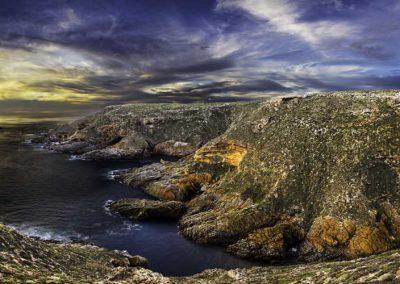 Althorpe Island - South Australia