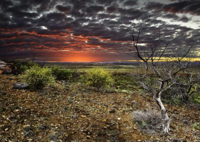 East of Vulkathuna - Flinders Ranges, South Australia