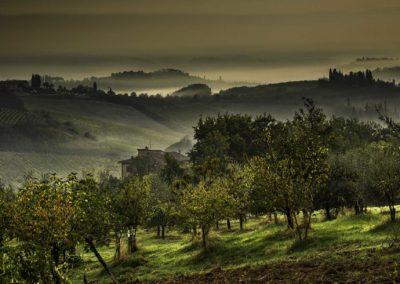 Tuscan landscape #6