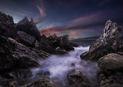 Petrel Cove glory